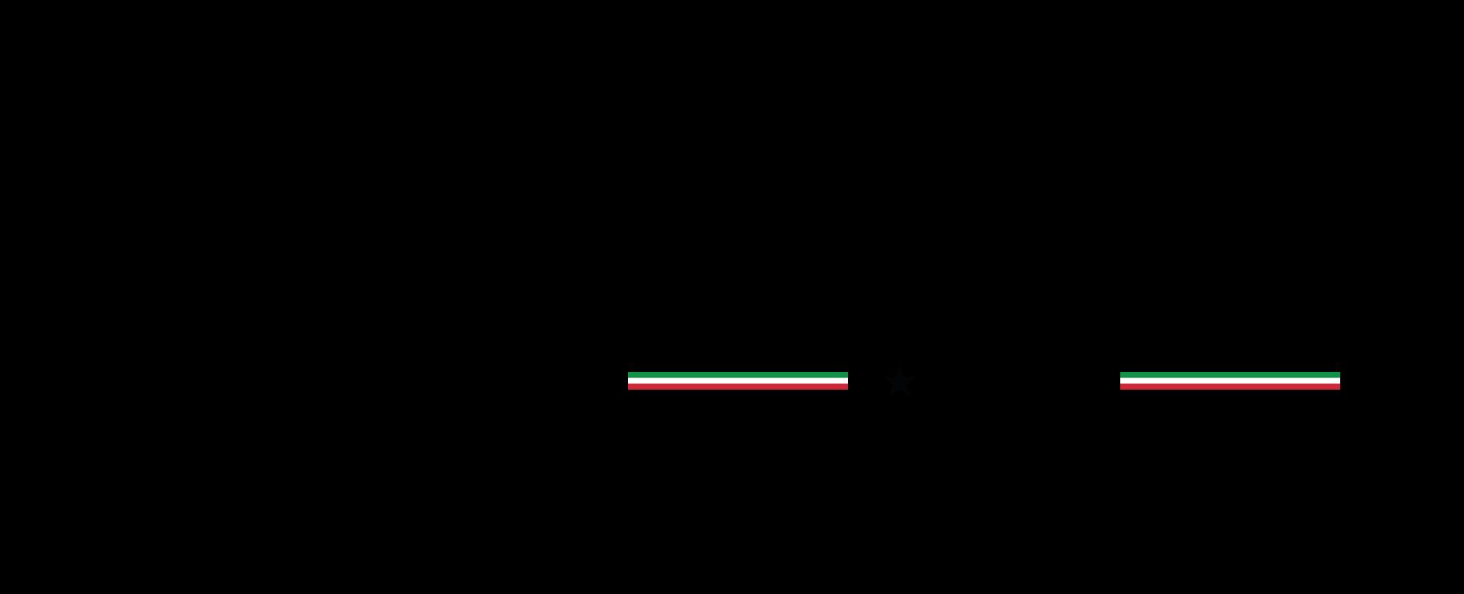 SilverStar-logo